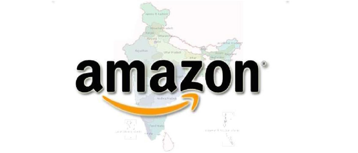 Amazon Investment-Largesse or Liability