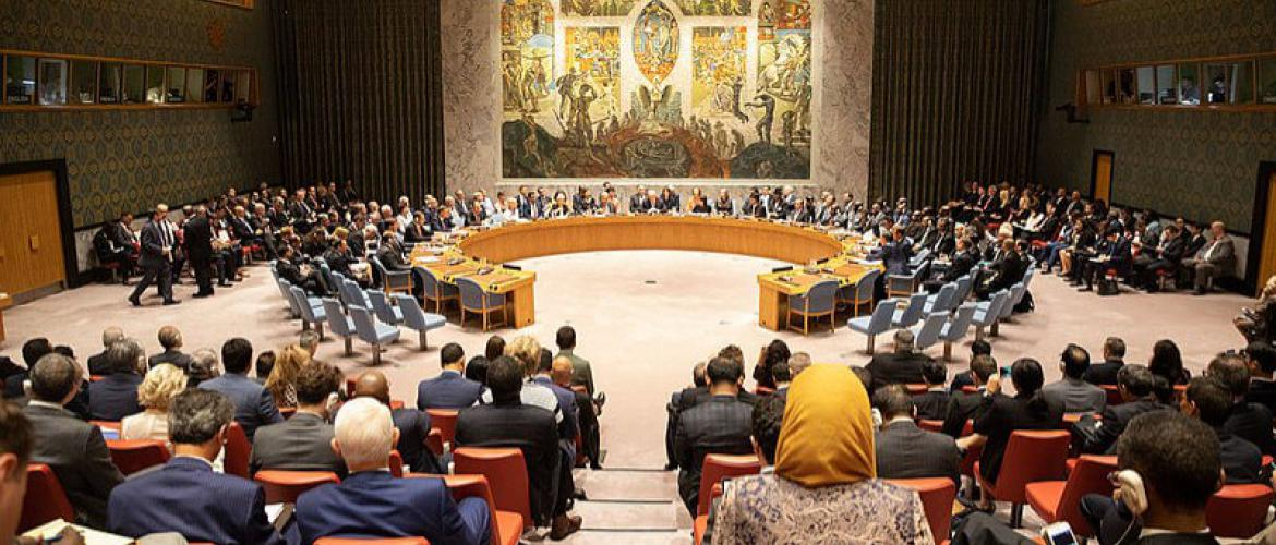 The Prospect of Security Council Reform