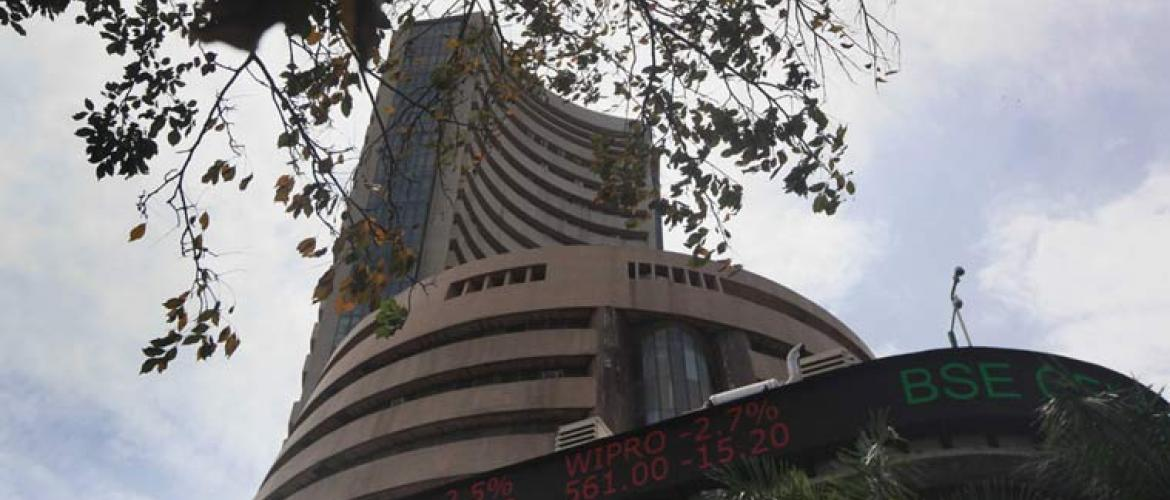 Stock markets buoyed by domestic investors