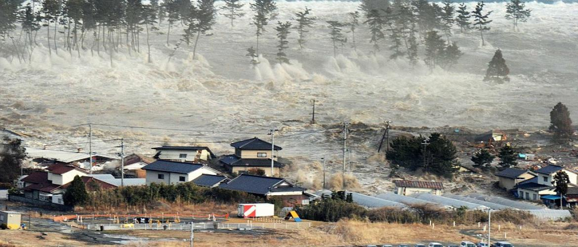 Using the Internet to stop Tsunamis